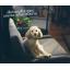 อธิบาย ความแตกต่าง ระหว่าง โซฟาเบด รุ่นคอนโด กับ รุ่น Luxury condo thumbnail 13