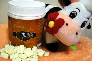 Nature Essence Colostrum 820 mg 400 เม็ด นมผงโคลอสตรัมรูปหมีโคอะล่าจากออสเตรเลีย เพิ่มภูมิคุ้มกันแก่ร่างกาย เพิ่มความสูง ในเด็กและวัยรุ่น