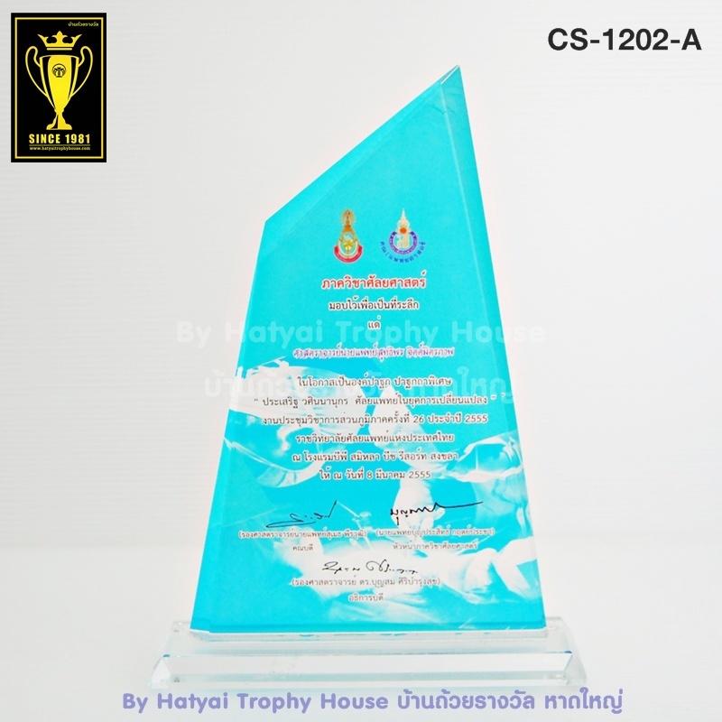 CS-1202 โล่รางวัล 2 Size