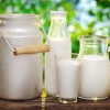 หัวน้ำหอมกลิ่น นมสด fresh milk 002486