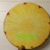 เบาะรองนั่ง 3D เกรด A รูปผลไม้ ส้บปะรด สีสันสวย ใช้ได้ทนนาน ถอดซักได้ ราคาถูกสุดๆ