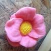 แม่พิมพ์ดอกไม้ 115g