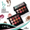 ใหม่ของแท้ พร้อมส่ง OD263 odbo CHIC Series 12 shades eyeshadow