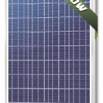 แผงโซล่าเซลล์ Solarland ชนิด Polycrystalline Silicon ขนาด 80W รับประกัน 10 ปี