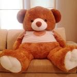 The bear XXLจัมโบ้