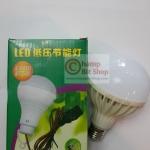 หลอดไฟ LED E27 DC12V 12W สีขาว