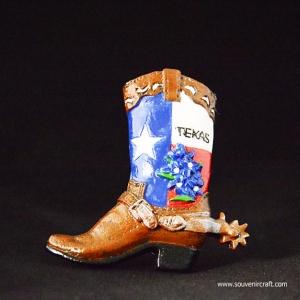 เท็กซัส อเมริกา Texas U.S.A