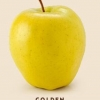 หัวน้ำหอม Golden Delicious (DKNY) 003717