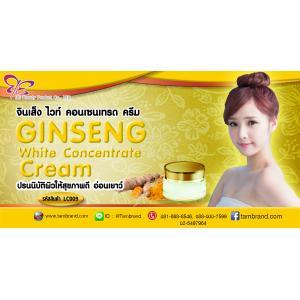 Ginseng White Concentrate Cream จินเส็ง ไวท์ คอนเซนเทรด ครีม : สำหรับทำแบรนด์และแบ่งบรรจุ