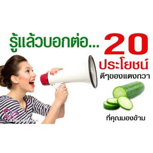 แตงกวา (Cucumber) : ผักยอดนิยม ประโยชน์ดีๆของแตงกวาที่คุณมองข้าม