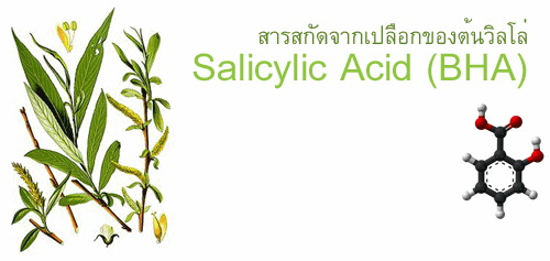 BHA salicylic acid 100g แบบผง