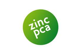 Zinc PCA (ซิงค์ พีซีเอ) 50g ลดสิว ลดความมัน