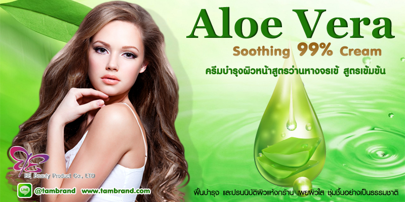Aloe Vera Soothing Cream ครีมว่านหางจระเข้ สำหรับทำแบรนด์และแบ่งบรรจุ