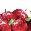 สครับ แอ๊ปเปิ้ล 100g