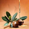 Argan oil Organic (virgin Deodorized) 60 ml
