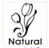แสตป์สบู่ รูป ดอกทิวลิป Natural