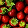 หัวน้ำหอมสตอเบอรี่สด fresh strawberry 003731