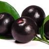 สารสกัด maqui berry 100ml