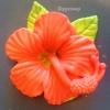 แม่พิมพ์ รูปดอกชบา 4 ช่อง 130g