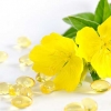 Evening Primrose Oil 100ml