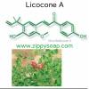 Licocone A ลดการอักเสบของสิว 10g