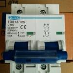 Breaker แบบ MCB DC ขนาด 100A 600V 2P (TMZ)
