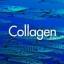 collagen สารสกัดจากปลาทะเล 30g** thumbnail 1