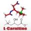 L-Carnitine 50g thumbnail 1