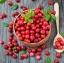 ผงสครับ Cranberry 100g thumbnail 1